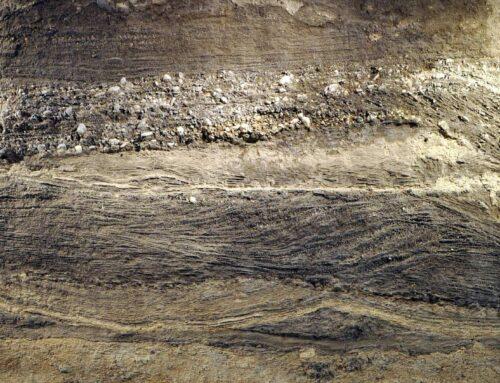 Geologe / Geologin 80 – 100%